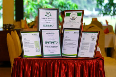 TripAdvisor Certificates received by Golden Grill